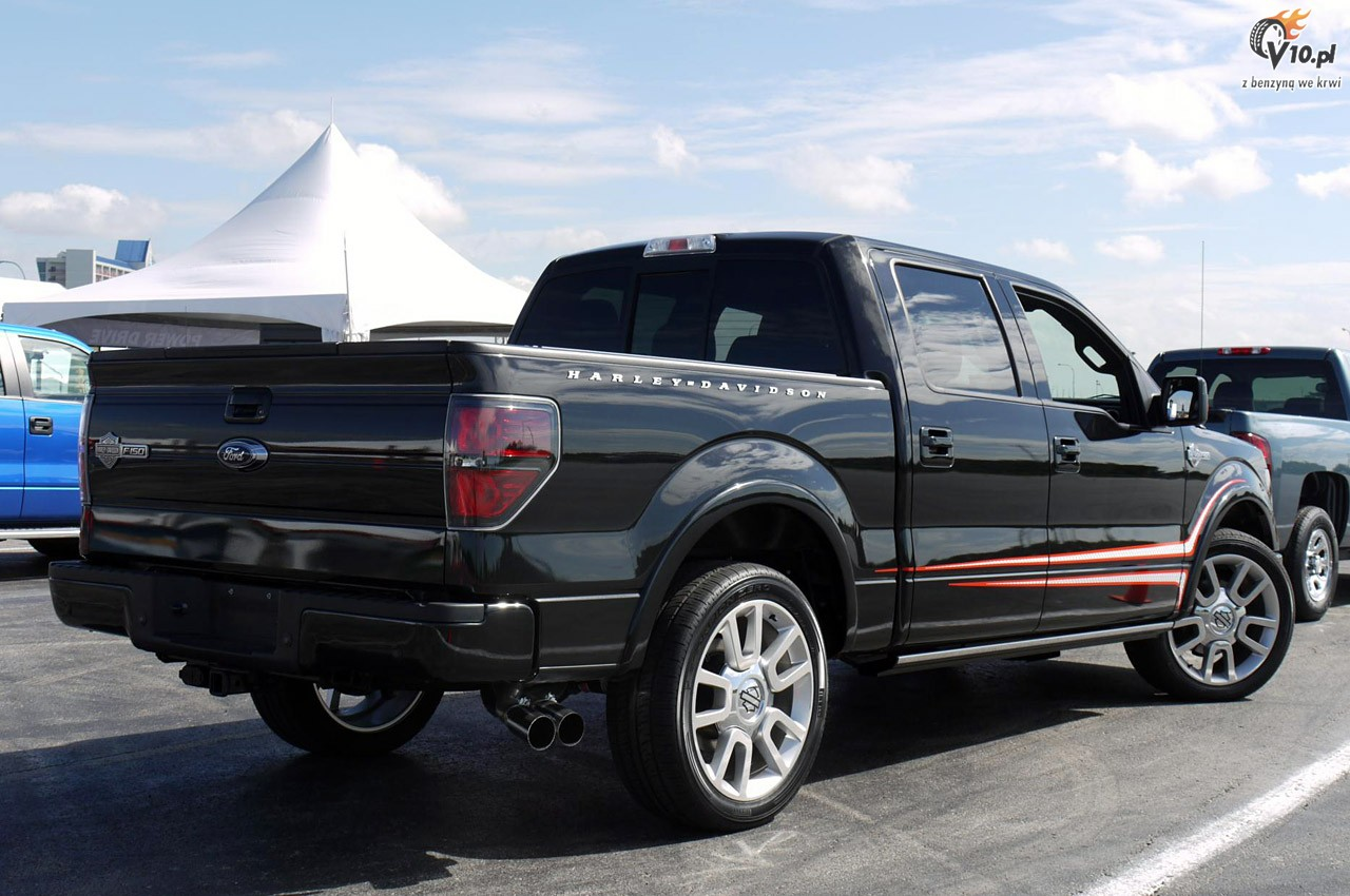 ford f 150 harley davidson for sale used ford f 150. Black Bedroom Furniture Sets. Home Design Ideas