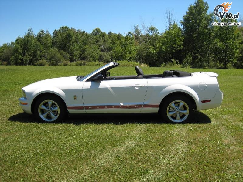 2008 ford mustang conv 3