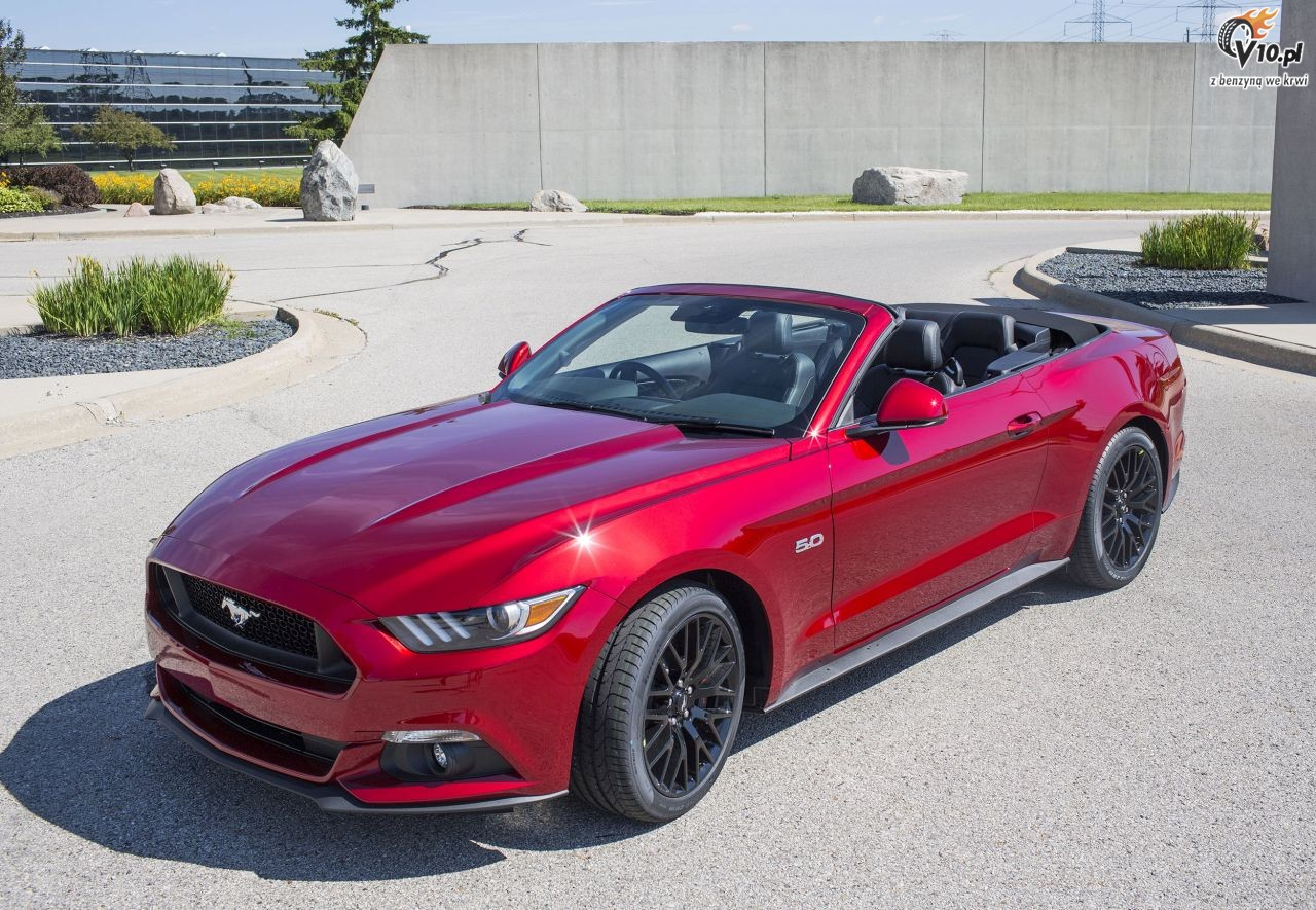 mustang 2015 cabrio. Black Bedroom Furniture Sets. Home Design Ideas