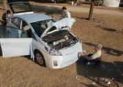 Toyota Prius Cozy