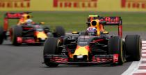 Verstappen pewny, �e nie por�ni si� z Ricciardo w pojedynku o mistrzostwo