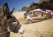 WRC - Rajd Meksyku 2018