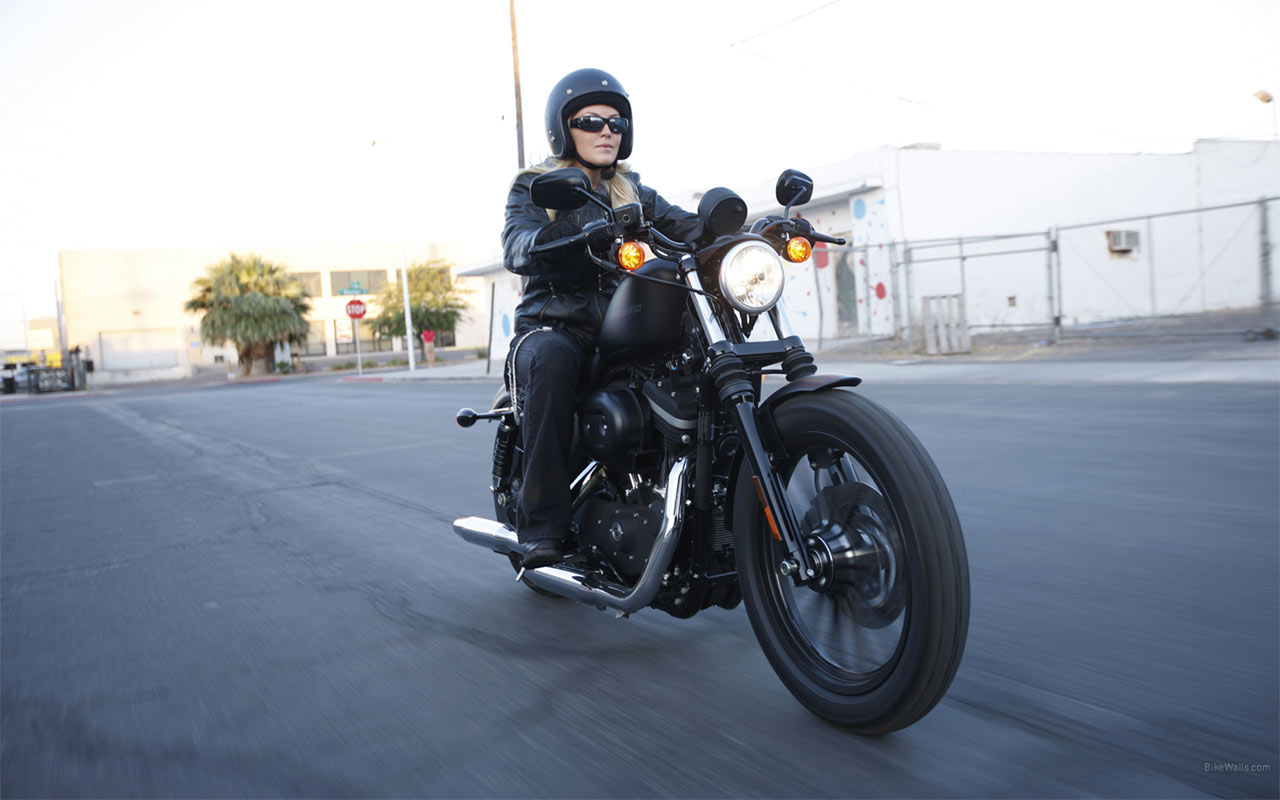 2014 Harley Davidson Iron 883 Release Date.html | Autos Post