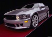 Tapety Saleen