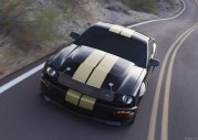 Tapety Shelby