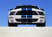 Shelby Cobra GT500 Show Car